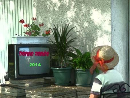 Bonne année 2014 copie