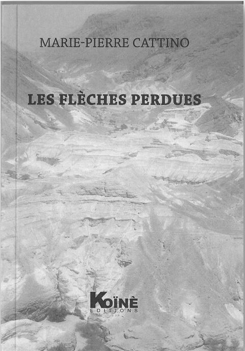 Les flèches perdues – Marie-Pierre Cattino
