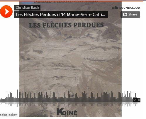 Les flèches perdues/ lecture par Marie-PierreCattino